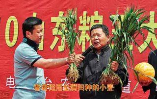 生物肥料招商